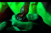 "HNHH – Shaun Lurding & Ziggy ""Louder"" [Heatseekers]"