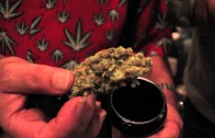 """P.A.P.I. (NORE) Feat. Styles P, Ghostface Killah """"Visit The """"Cannabis Cup"""" In Amsterdam"""""""